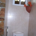 Toilet with bidet and small window above.